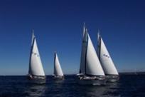 sartie per barche