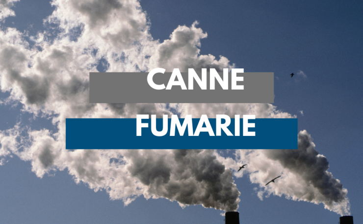 canne fumarie